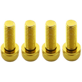 Reverse Disc Brake Bolt Set 4 pieces gold